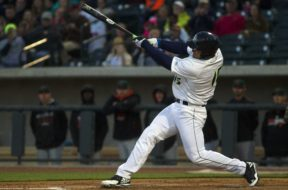Minor League Baseball: Augusta GreenJackets at Columbia Fireflies