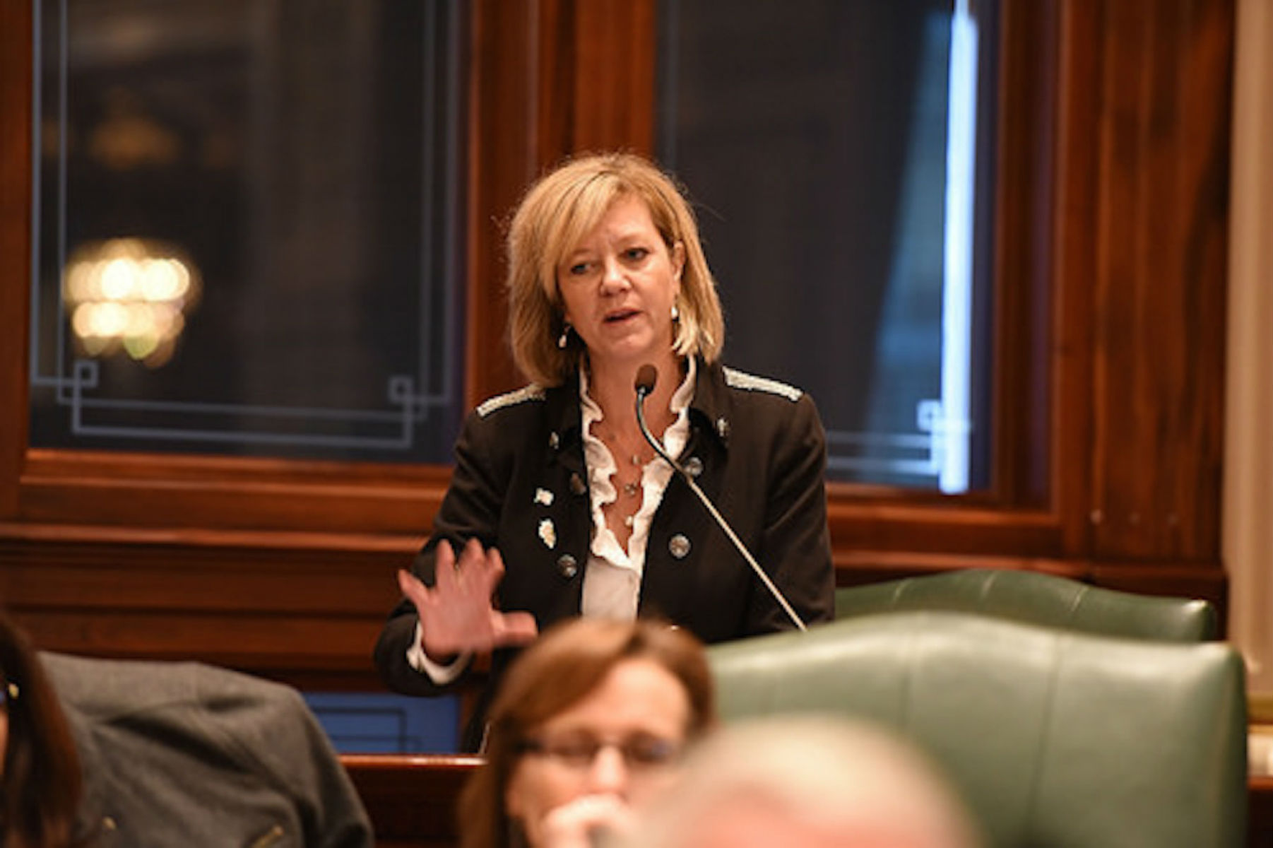 Jeanne Ives Mounts Primary Challenge to Bruce Rauner